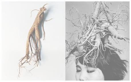 포토그래퍼 조선희 작가와 함께 한 희망가게 100호점 기념 사진전